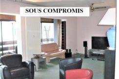 Mulhouse Dornach : bel appartement 103m²
