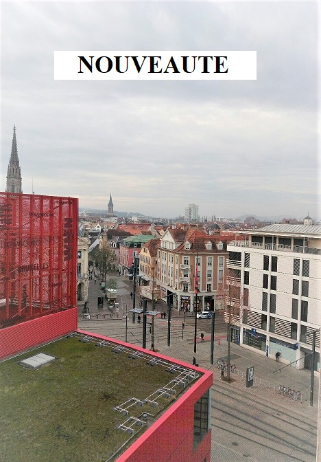 Mulhouse centre : appartement F4 96 m²