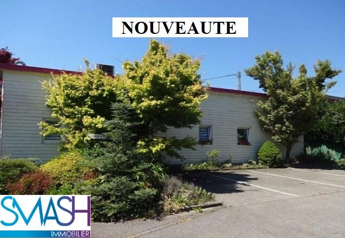 Aspach le haut : local professionnel ou maison 197 m²