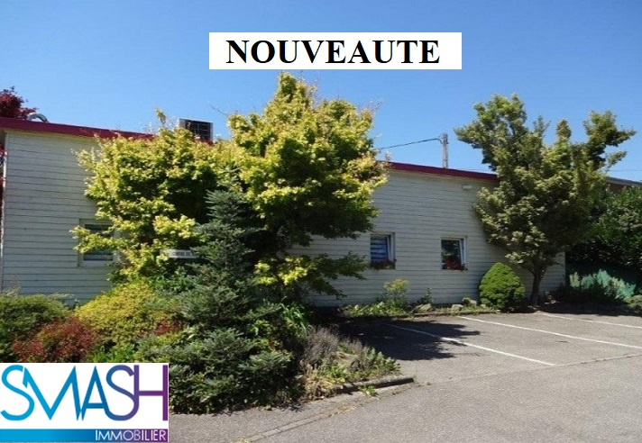 ASPACH LE HAUT : plain pied 197 m² 10ares